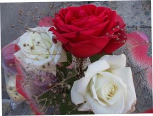 Розы  многолетние ветвистые кустарники