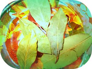 Применение лаврового листа наружно
